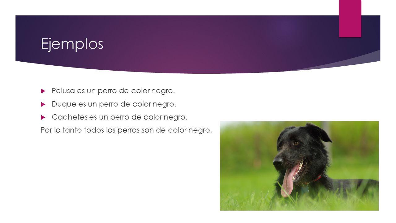 Ejemplos Pelusa es un perro de color negro.