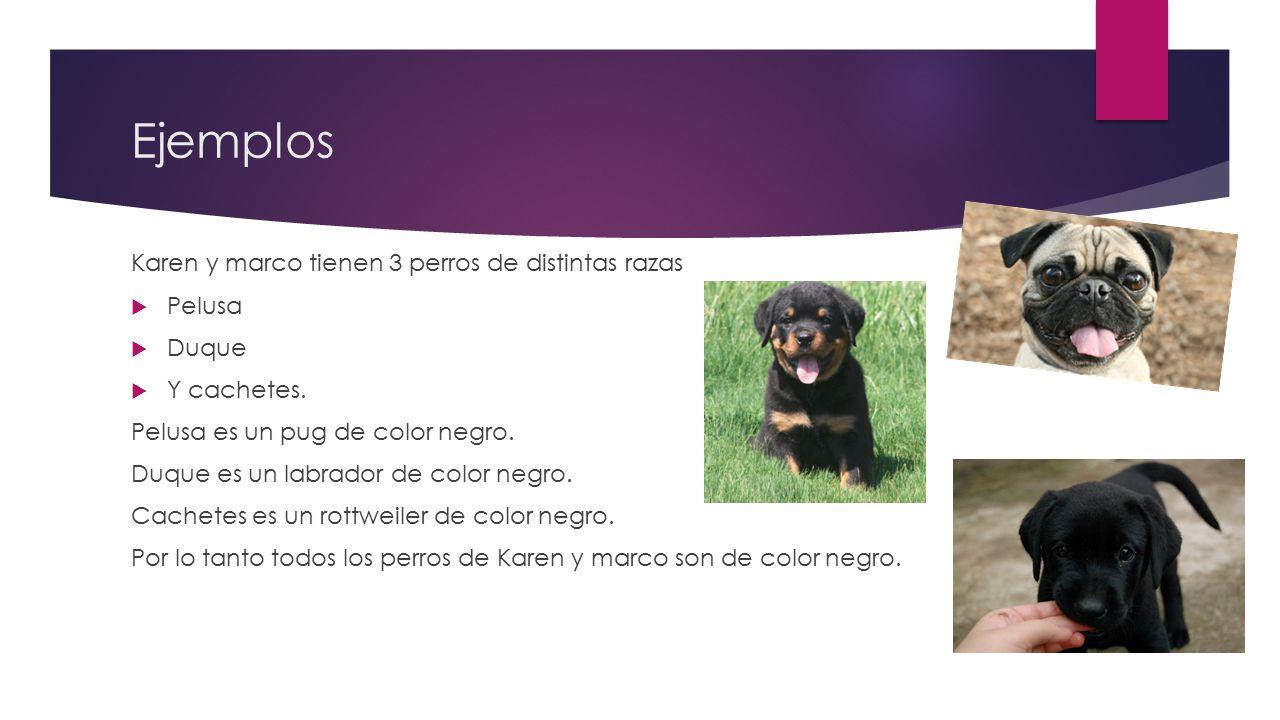 Ejemplos Karen y marco tienen 3 perros de distintas razas Pelusa Duque