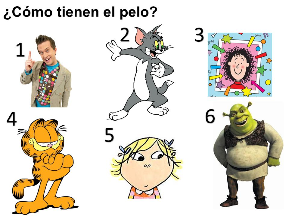 ¿Cómo tienen el pelo 2. 3. 1. 6. 4. 5. Ask pupils to say one sentence about the hair of each character.