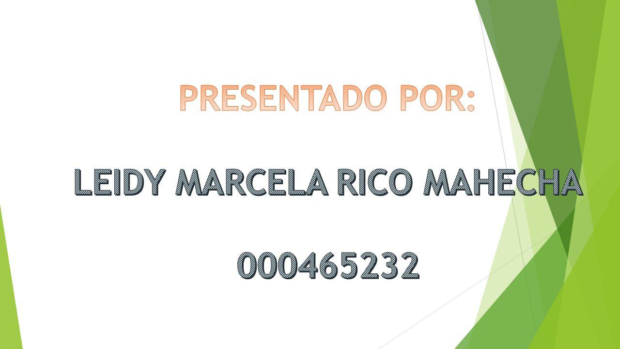 LEIDY MARCELA RICO MAHECHA