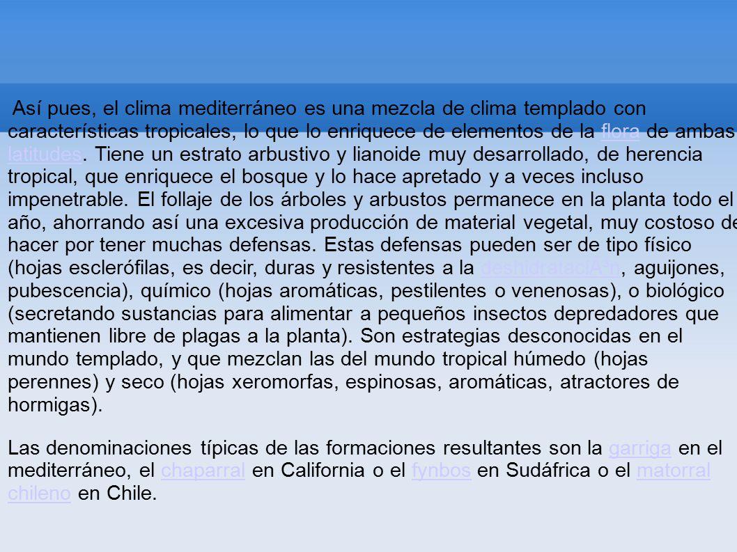 Climograma del clima mediterraneo t pico ppt video for Arboles de hoja perenne para clima mediterraneo