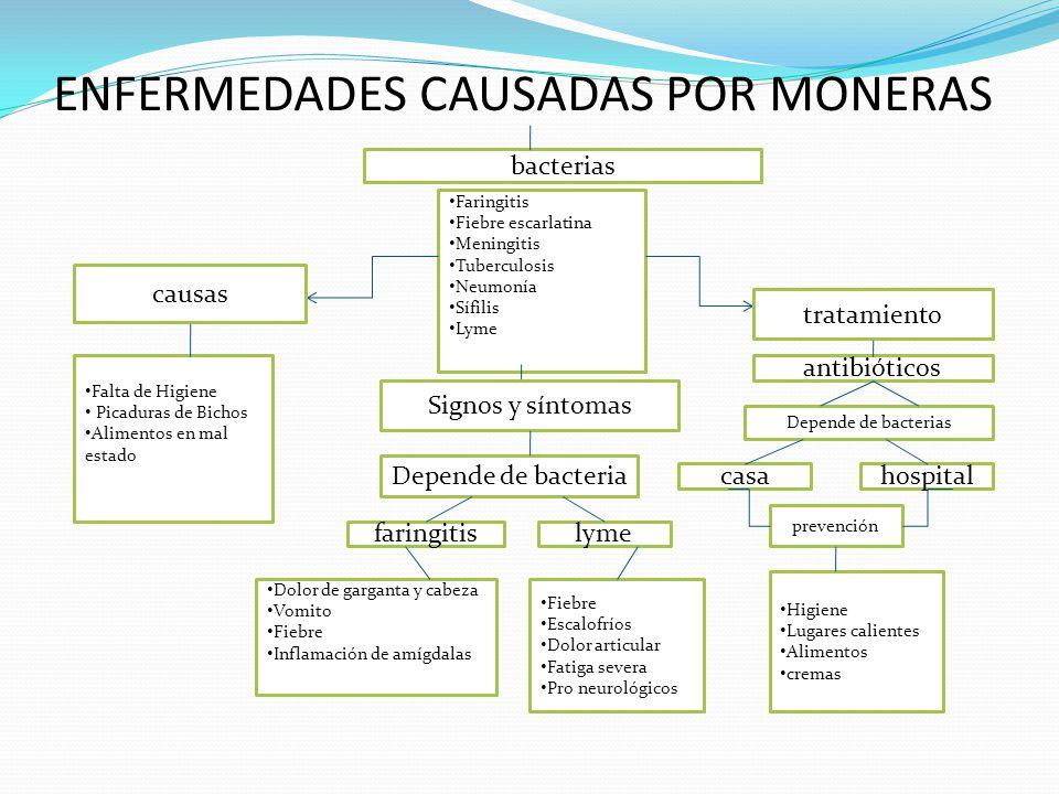 ENFERMEDADES CAUSADAS POR MONERAS