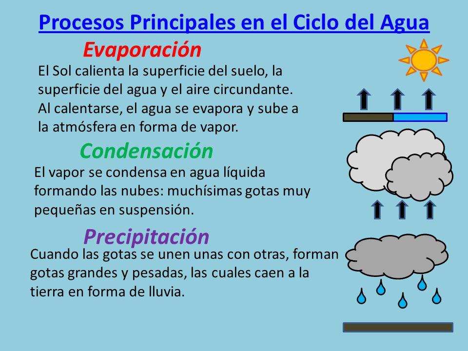 Procesos Principales en el Ciclo del Agua
