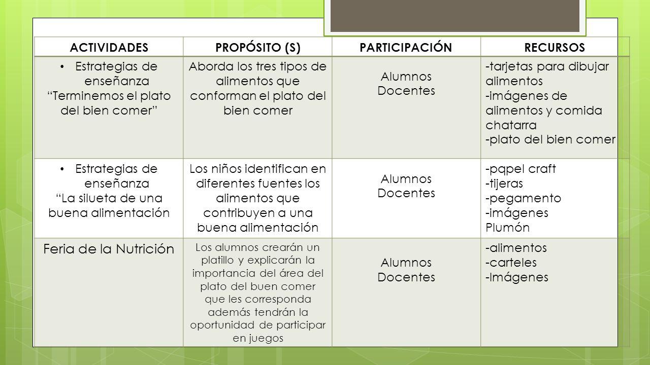 Proyecto de alimentaci n ppt video online descargar for Cronograma jardin infantil 2015