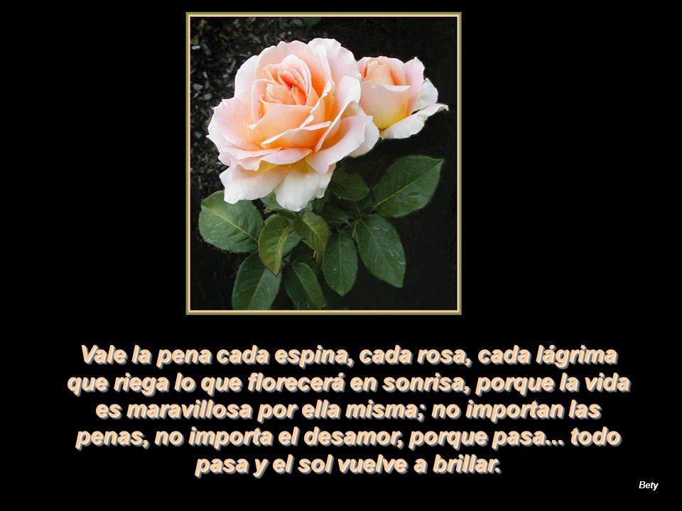 Vale la pena cada espina, cada rosa, cada lágrima que riega lo que florecerá en sonrisa, porque la vida es maravillosa por ella misma; no importan las penas, no importa el desamor, porque pasa... todo pasa y el sol vuelve a brillar.