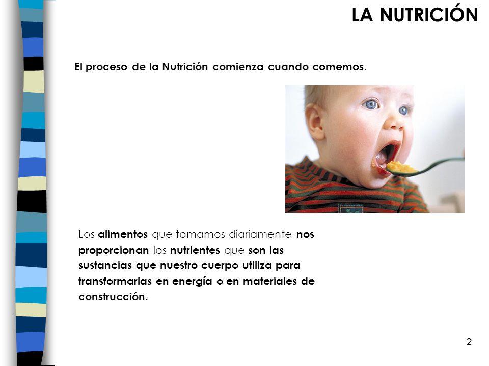 LA NUTRICIÓN El proceso de la Nutrición comienza cuando comemos.