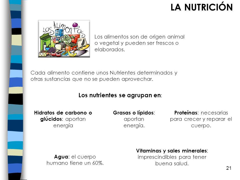 LA NUTRICIÓN Los nutrientes se agrupan en:
