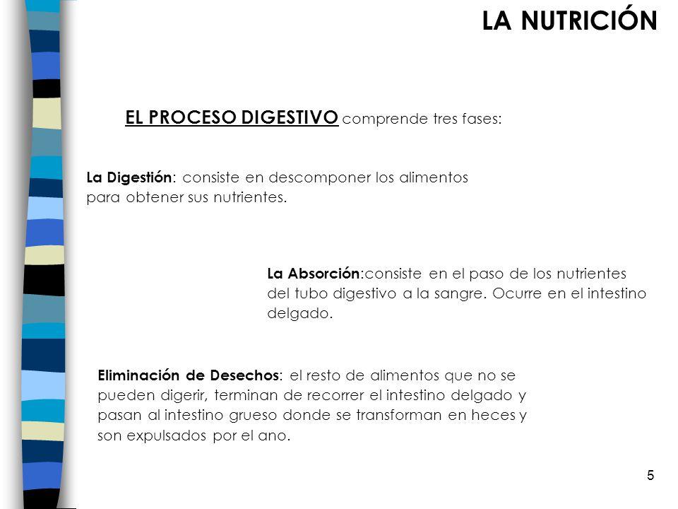 EL PROCESO DIGESTIVO comprende tres fases:
