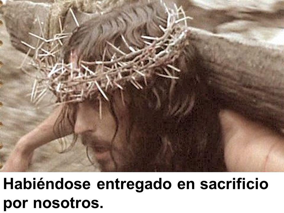Habiéndose entregado en sacrificio por nosotros.