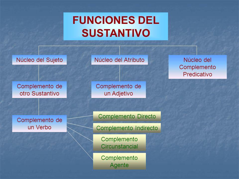 FUNCIONES DEL SUSTANTIVO