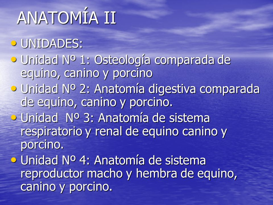 ANATOMÍA II UNIDADES: Unidad Nº 1: Osteología comparada de equino ...