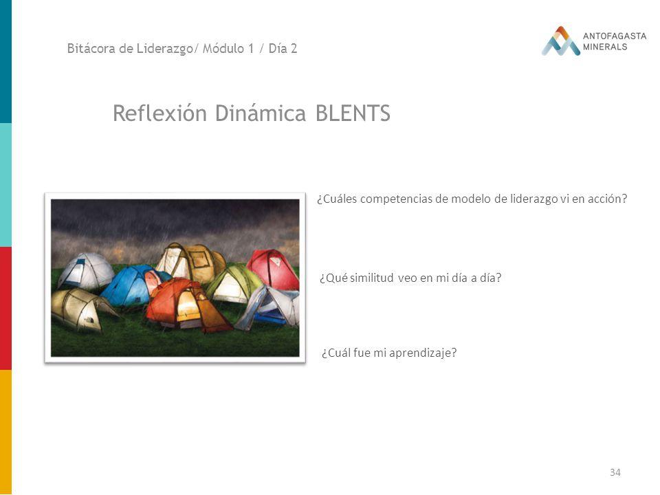Reflexión Dinámica BLENTS