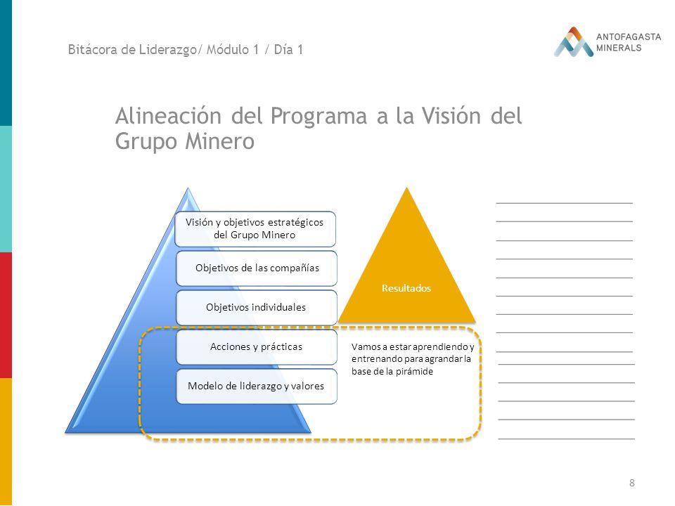 Alineación del Programa a la Visión del Grupo Minero