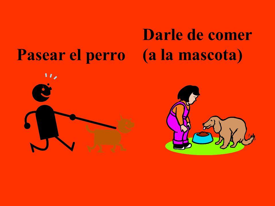 Pasear el perro Darle de comer (a la mascota)