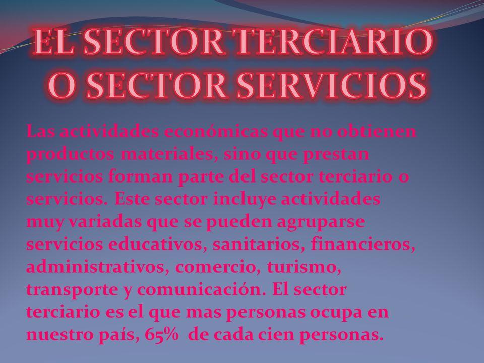 EL SECTOR TERCIARIO O SECTOR SERVICIOS