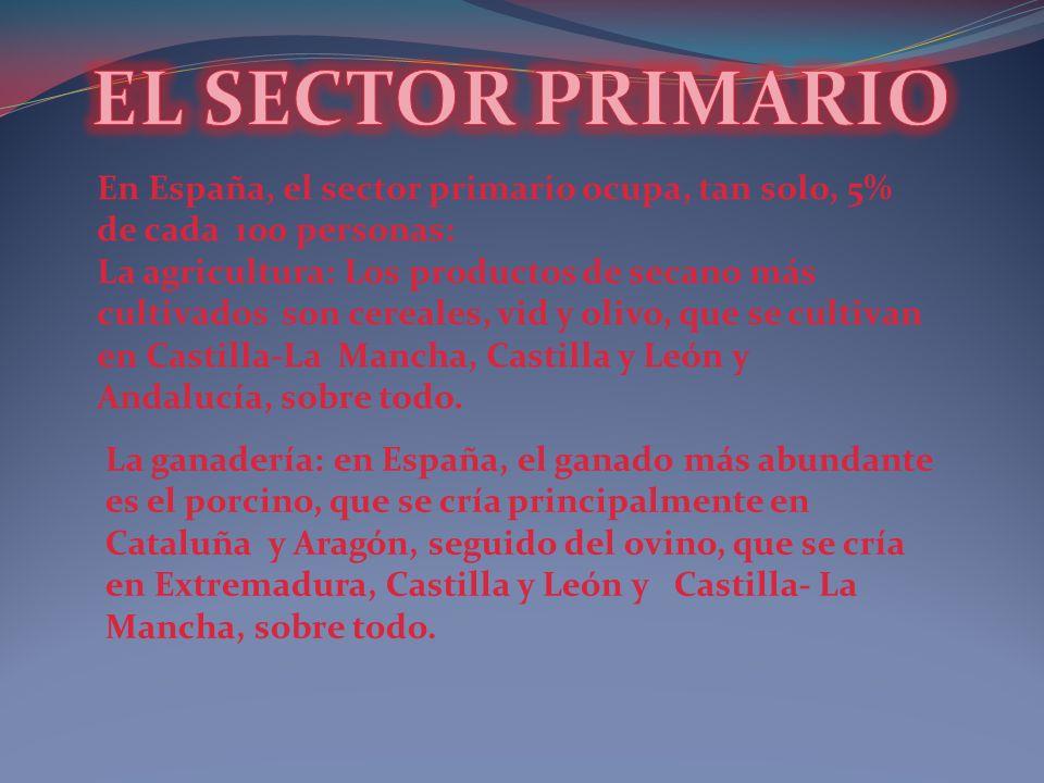 EL SECTOR PRIMARIO En España, el sector primario ocupa, tan solo, 5% de cada 100 personas: