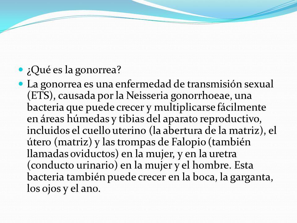 ¿Qué es la gonorrea