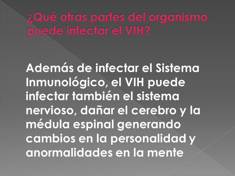 ¿Qué otras partes del organismo puede infectar el VIH