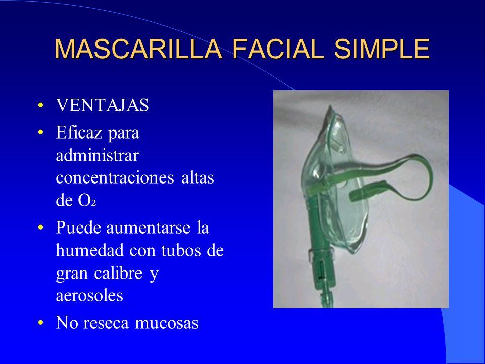 Elimina manchas de pa o y acne poderosa mascarilla casera - Remedios contra la humedad ...