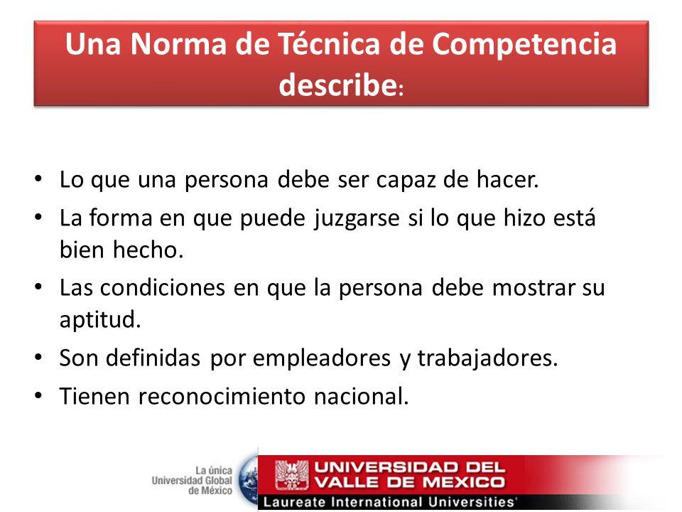 Una Norma de Técnica de Competencia describe: