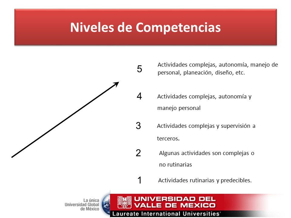 Niveles de Competencias