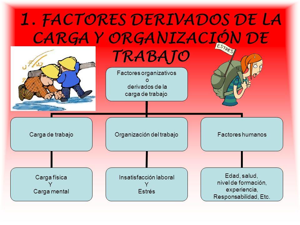 Montserrat l pez pardo ppt video online descargar for Organizacion y limpieza del equipo de trabajo en la cocina