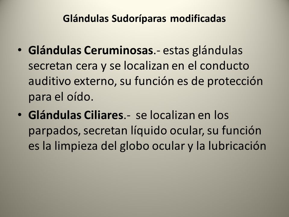 Glándulas Sudoríparas modificadas