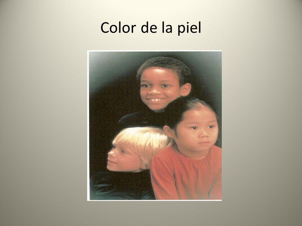 Color de la piel