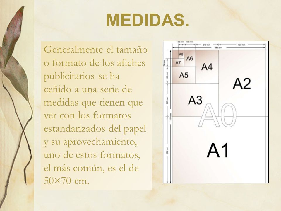 MEDIDAS.