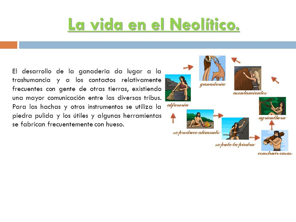 La vida en el Neolítico.
