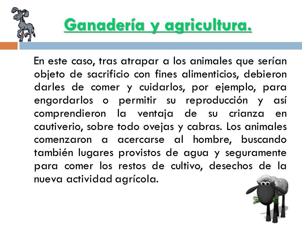 Ganadería y agricultura.