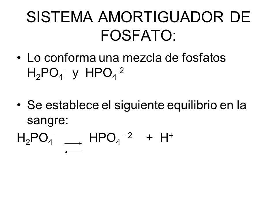 SISTEMA AMORTIGUADOR DE FOSFATO:
