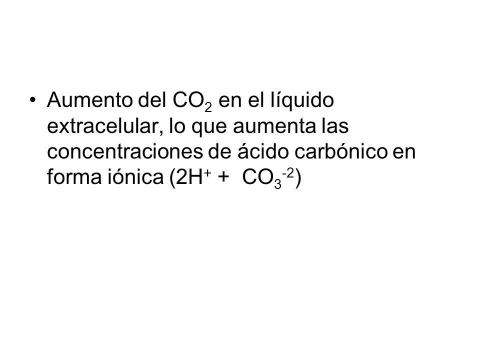 Aumento del CO2 en el líquido extracelular, lo que aumenta las concentraciones de ácido carbónico en forma iónica (2H+ + CO3-2)