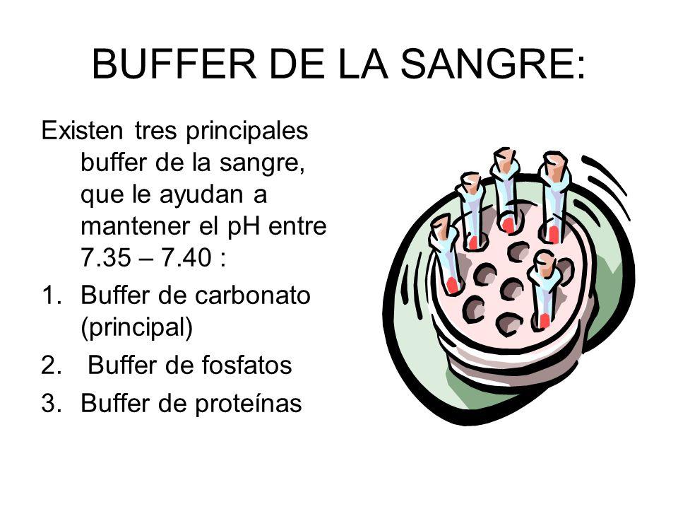 BUFFER DE LA SANGRE: Existen tres principales buffer de la sangre, que le ayudan a mantener el pH entre 7.35 – 7.40 :