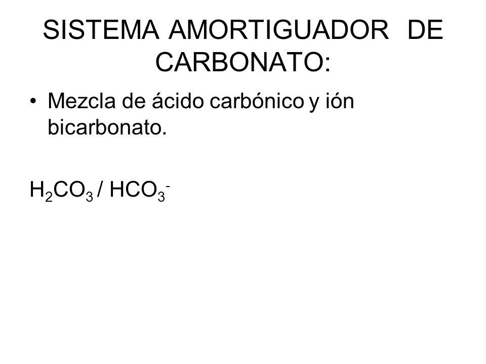 SISTEMA AMORTIGUADOR DE CARBONATO: