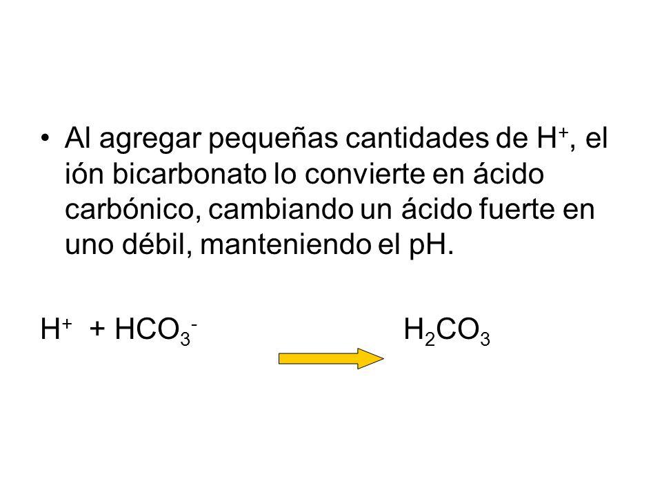 Al agregar pequeñas cantidades de H+, el ión bicarbonato lo convierte en ácido carbónico, cambiando un ácido fuerte en uno débil, manteniendo el pH.