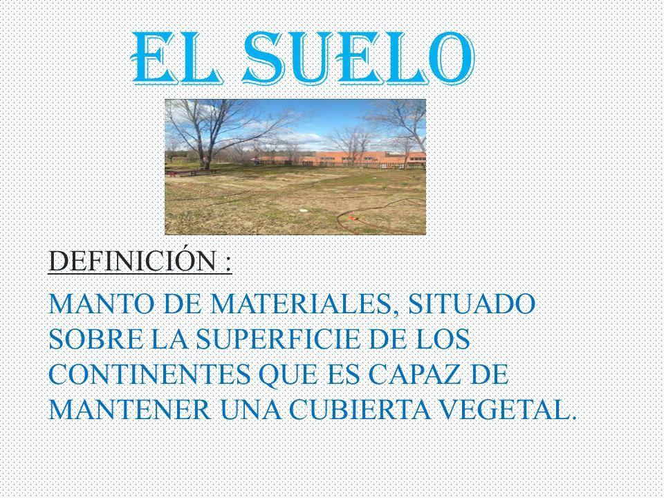 El suelo definici n manto de materiales situado sobre for Materiales que forman el suelo
