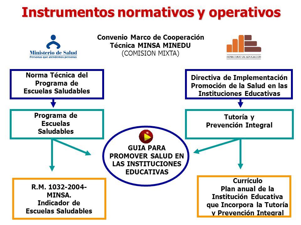 Instrumentos normativos y operativos