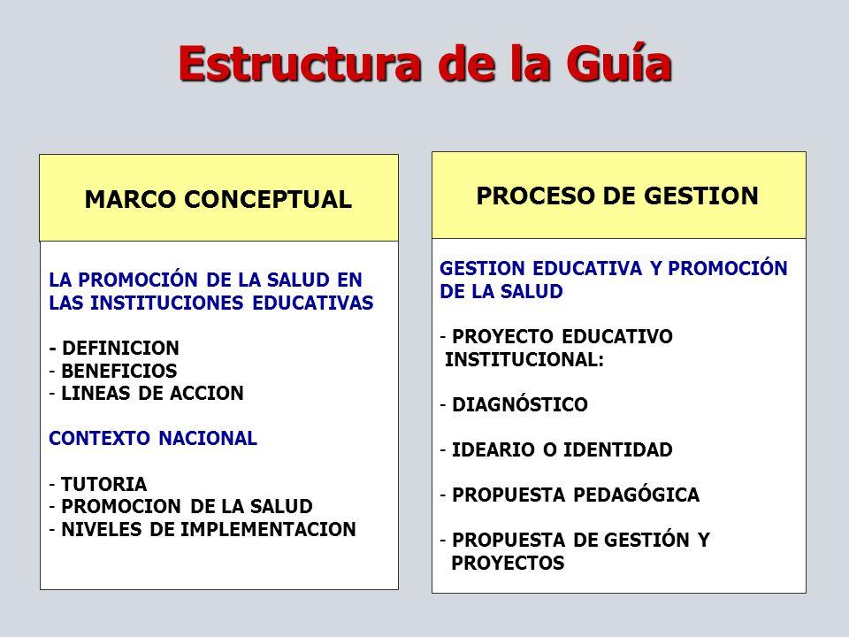 Estructura de la Guía PROCESO DE GESTION MARCO CONCEPTUAL