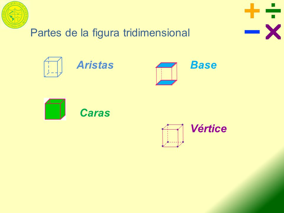 Partes de la figura tridimensional