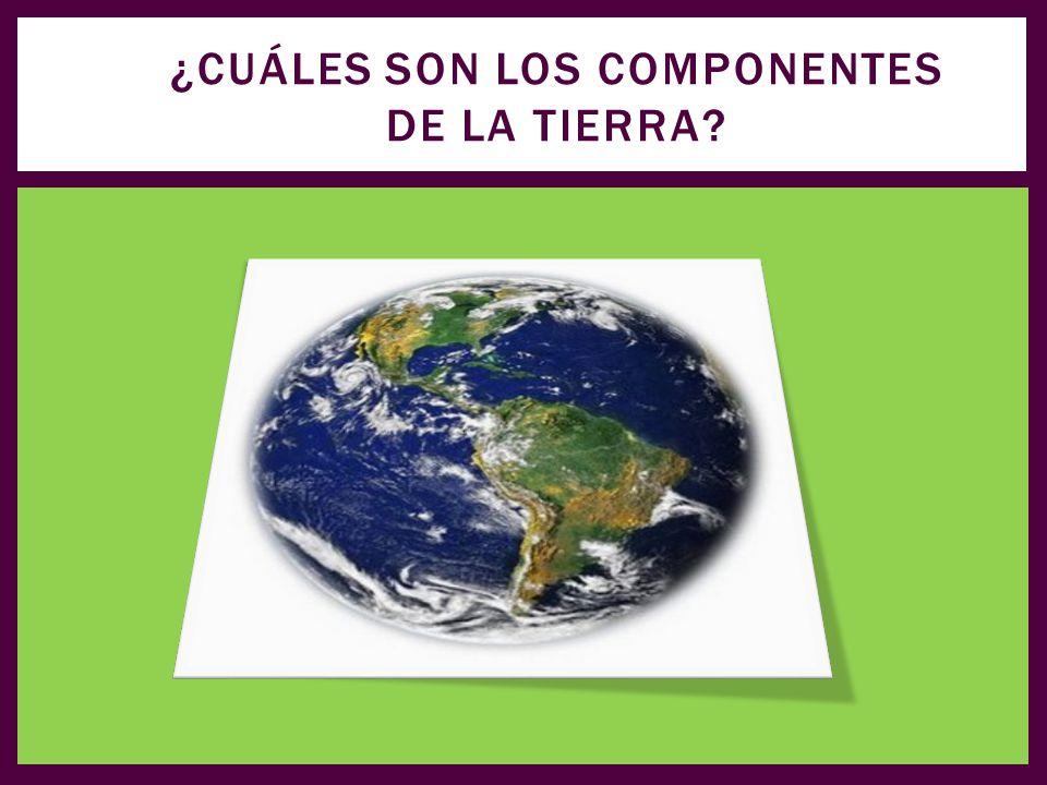 ¿Cuáles son los componentes de la tierra
