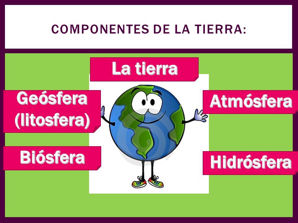 Componentes de la tierra: