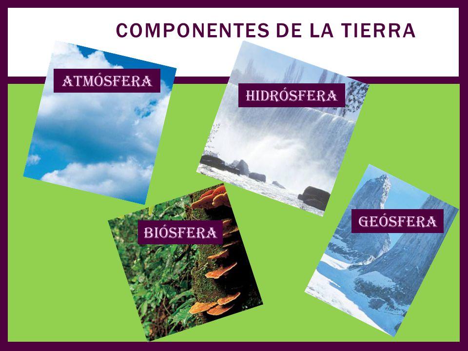 Componentes de la tierra
