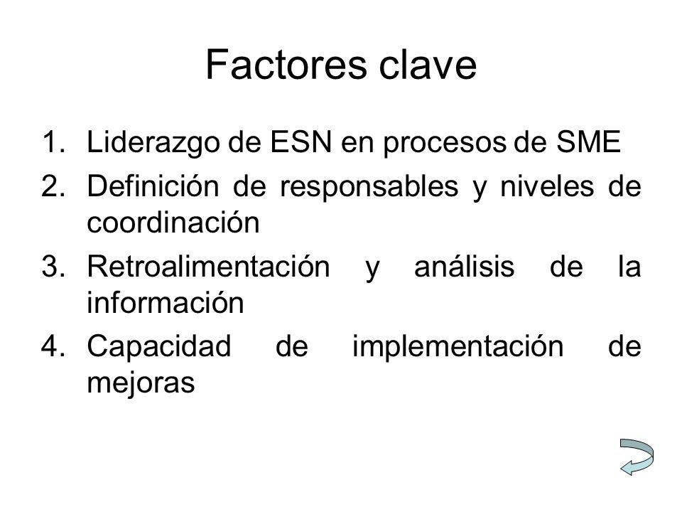 Factores clave Liderazgo de ESN en procesos de SME