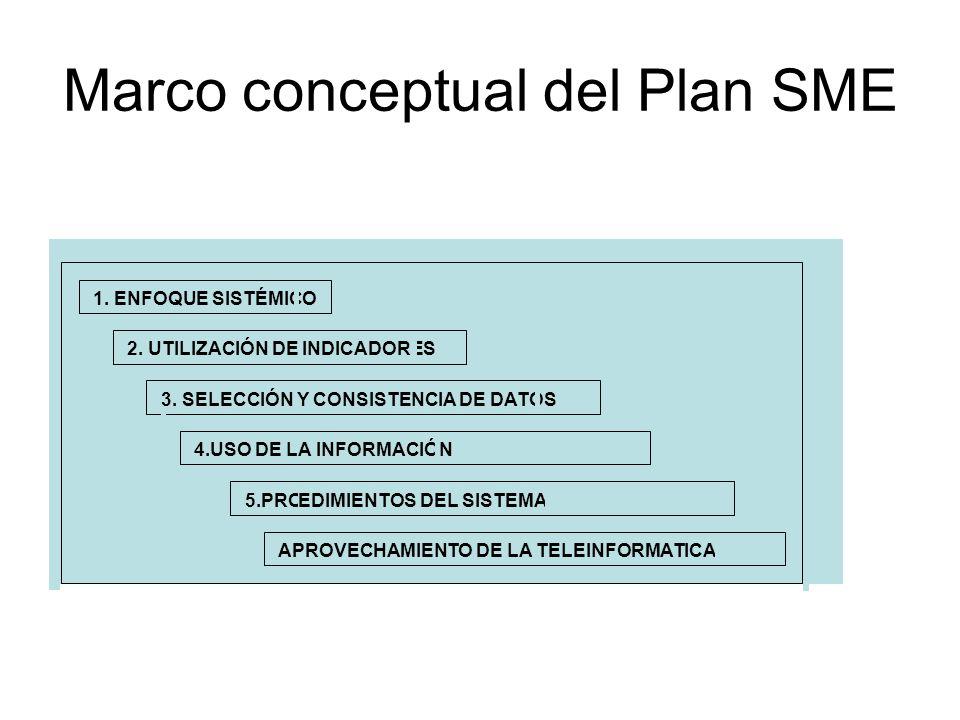 Marco conceptual del Plan SME