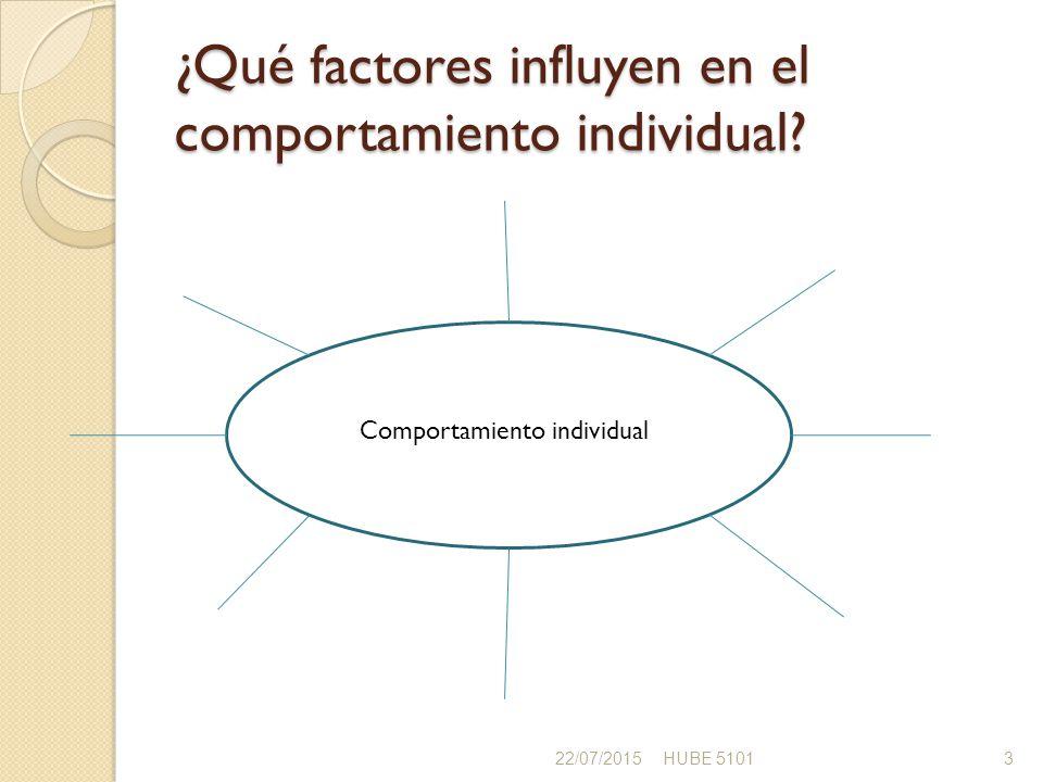 ¿Qué factores influyen en el comportamiento individual