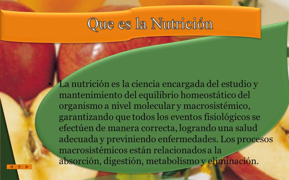 Que es la Nutrición