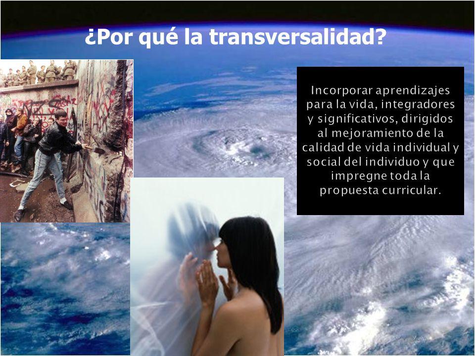 ¿Por qué la transversalidad