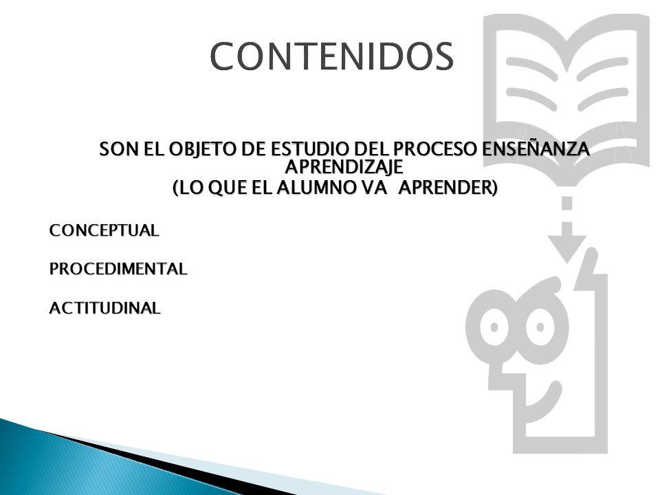 CONTENIDOS SON EL OBJETO DE ESTUDIO DEL PROCESO ENSEÑANZA APRENDIZAJE