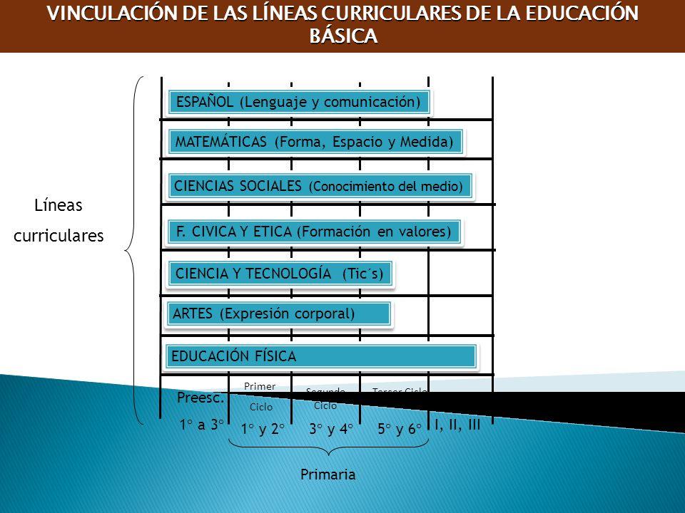 VINCULACIÓN DE LAS LÍNEAS CURRICULARES DE LA EDUCACIÓN BÁSICA